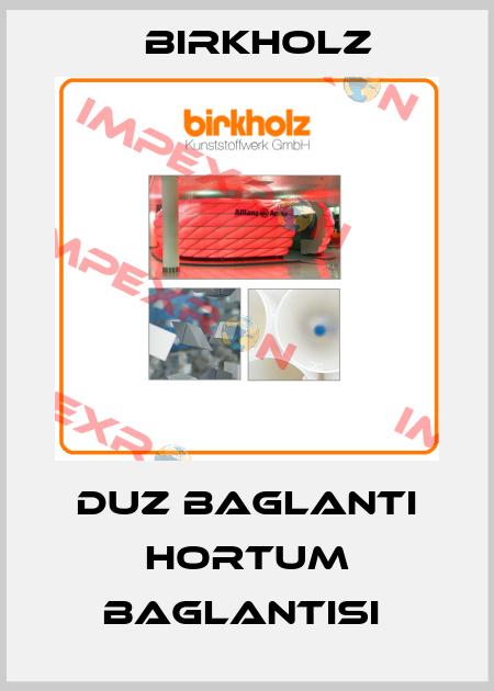 Birkholz-DUZ BAGLANTI HORTUM BAGLANTISI  price